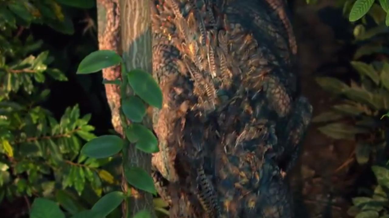 T. rex bezoekt oudste tuin van Nederland