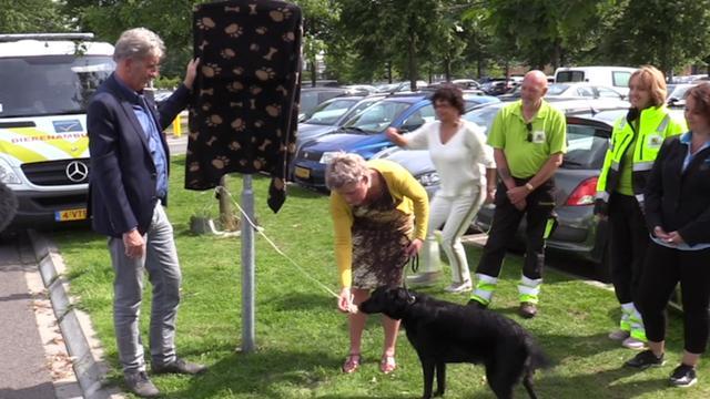 Dierenbescherming onthult bord in Emmen ter bescherming van honden