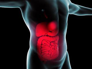 Toediening van eiwit via injecties in muismodel leidde tot sterke vermindering van graft-versus-host ziekte