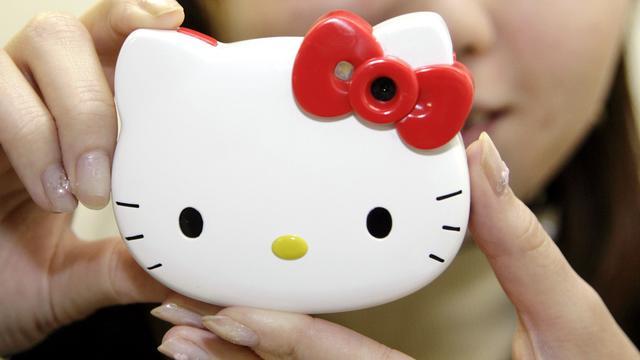Groot beveilligingslek Hello Kitty-site gedicht
