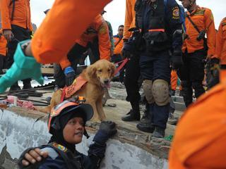 11.600 huizen werden beschadigd en tientallen panden op Sumatra zijn ingestort