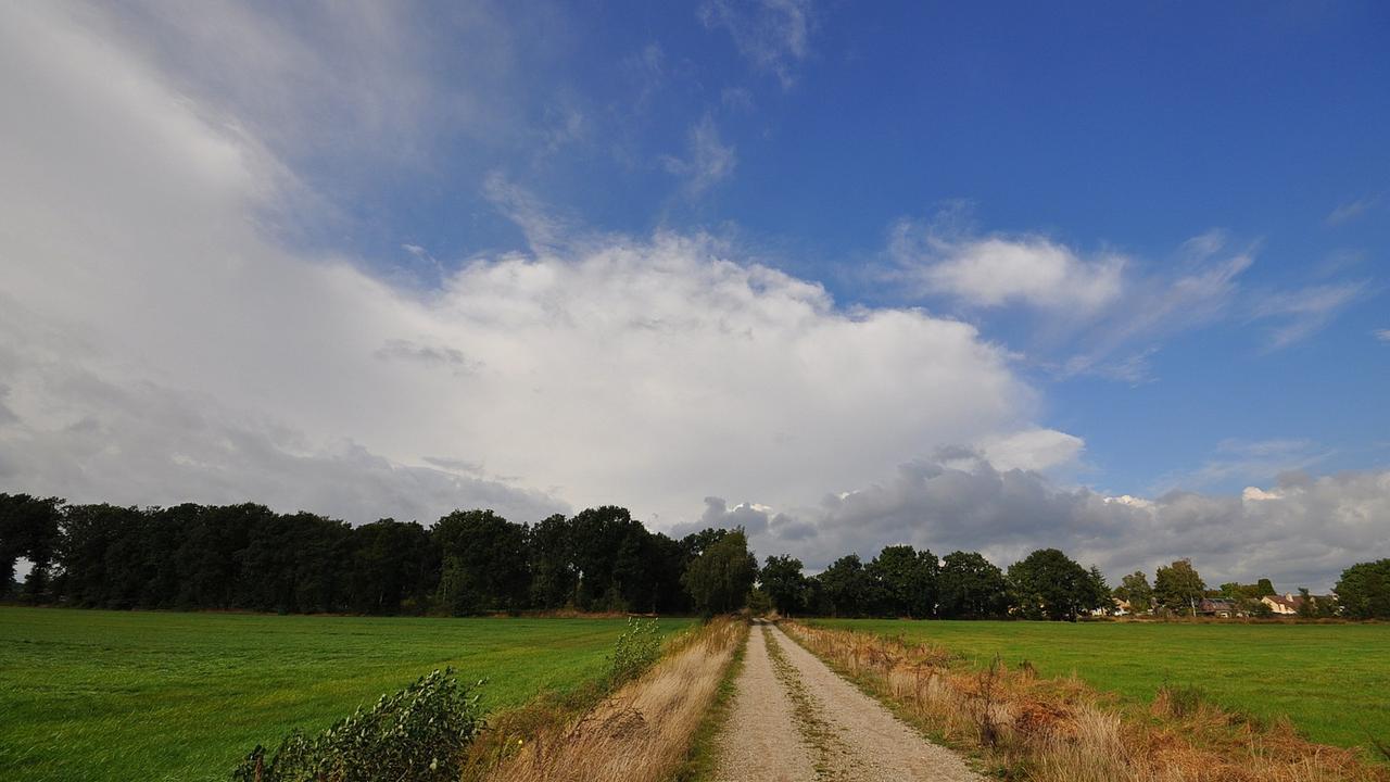 Weerbericht woensdag 08:00u: Wolkenvelden en soms zon