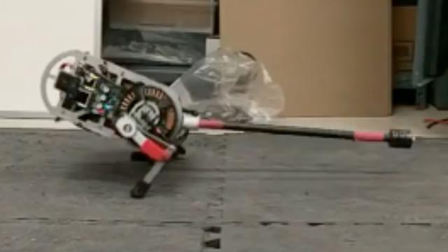 Robot gebruikt staart om in balans te blijven