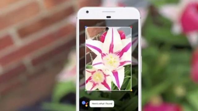 Google presenteert cameralens die begrijpt wat je ziet