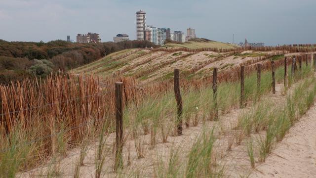 Gemeenten en waterschap willen kust samen beheren