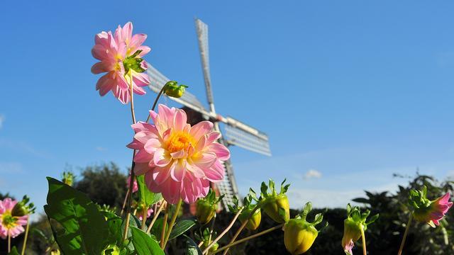 Zondag 20 graden voorspeld in Groningen