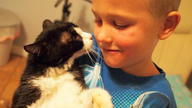 Kat van twintig wordt beste vrienden met jongen van vijf