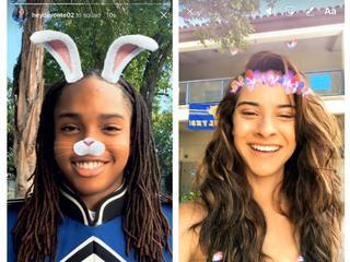 Filters met onder meer konijnengezicht en bloemenkrans