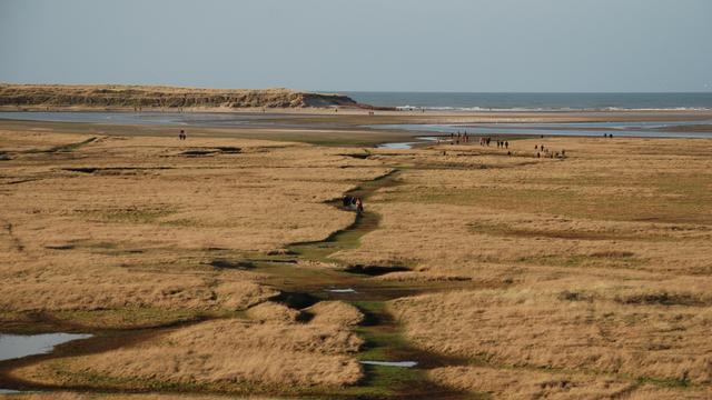 Grondmijn gevonden op strand van Texel