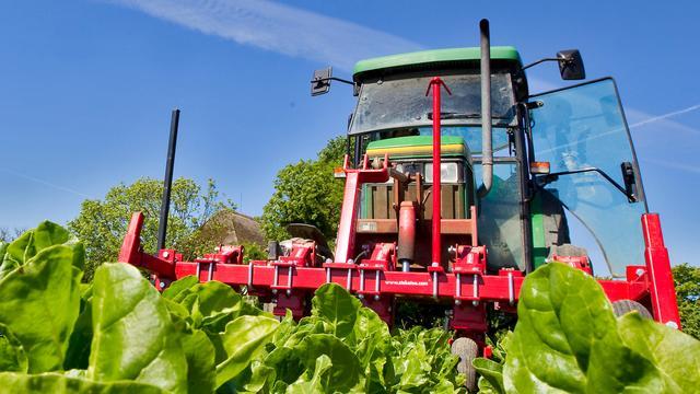 Belgen mogen onkruidverdelger glyfosaat niet meer gebruiken