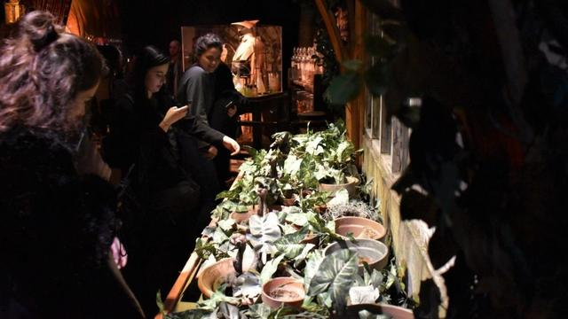 Al bijna 100.000 bezoekers voor Harry Potter-tentoonstelling