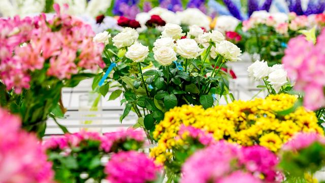 Snijbloemen stuwen omzet Floraholland