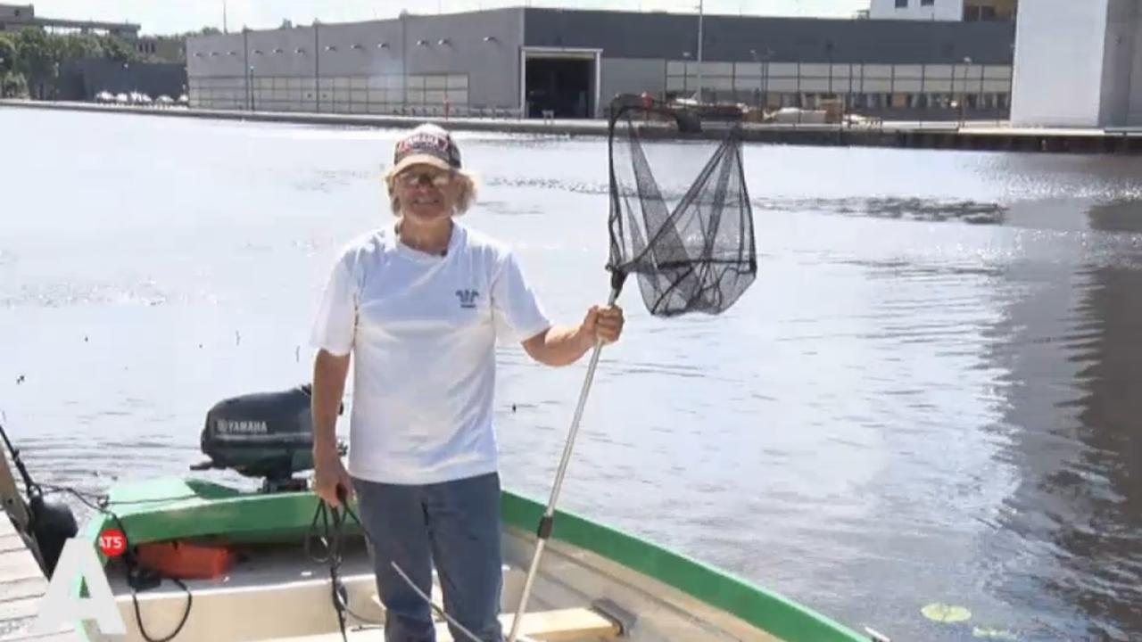 Man redt meeuwen uit het water