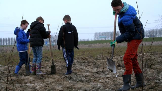 Kinderen planten nieuw stuk Sloebos aan
