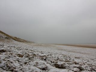 Vrijwilligers ruimen Bevelandse strandjes op