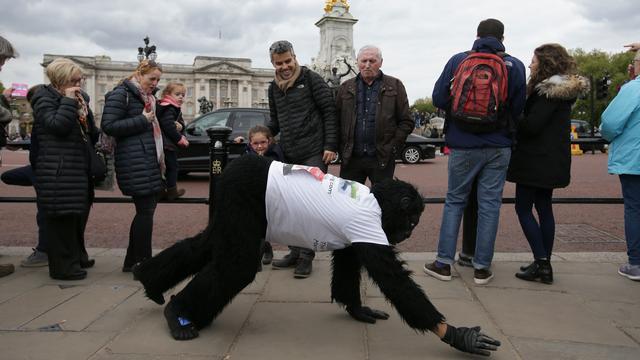 Brit in gorillapak voltooit Londense marathon kruipend