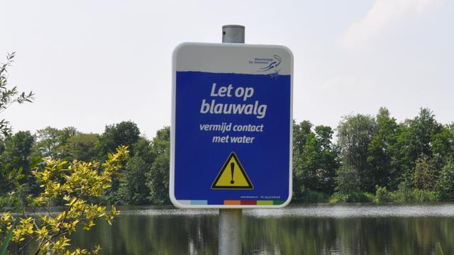 Blauwalgen aangetroffen in vijver Etten-Leur