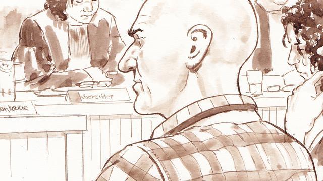 Veertien jaar cel geëist voor verkrachting en doodslag Nicole van den Hurk