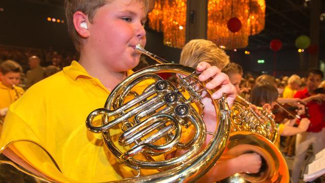 Veel basisscholen vragen subsidie aan voor muziekonderwijs