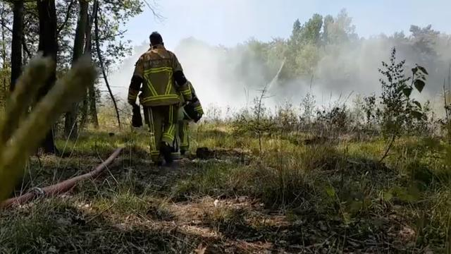 Brandweer rukt uit voor grote natuurbrand Bornerbroek