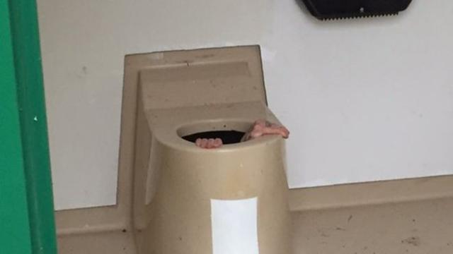 Man zit uur vast in toiletpot