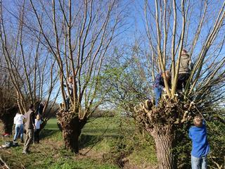 Boswachters verzorgen rondleiding in Boswachterij Westerschouwen