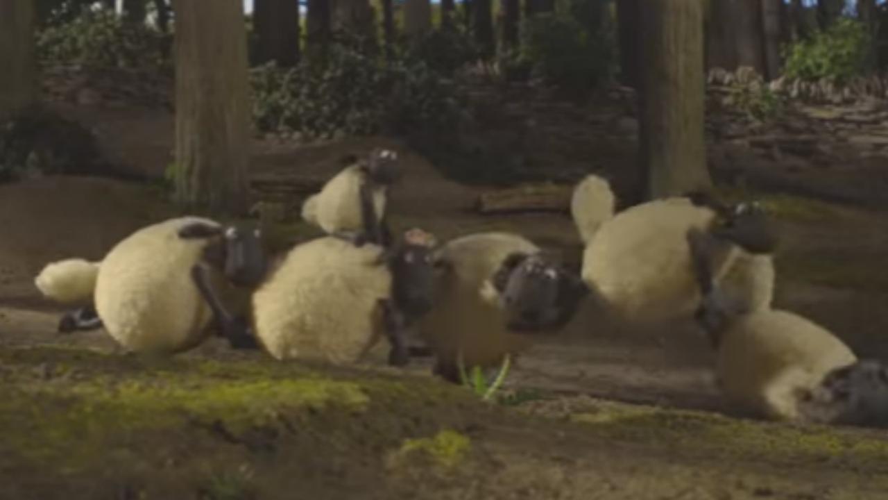 Trailer: Shaun het Schaap