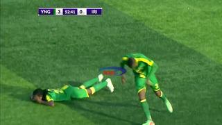 Bijenplaag verstoort voetbalwedstrijd in Tanzania