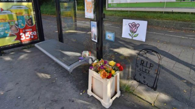 Gedenksteen voor Lex bij bushokje Eisenhowerlaan