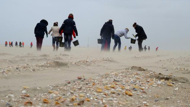 Jutters ontdoen Walcherse stranden van troep