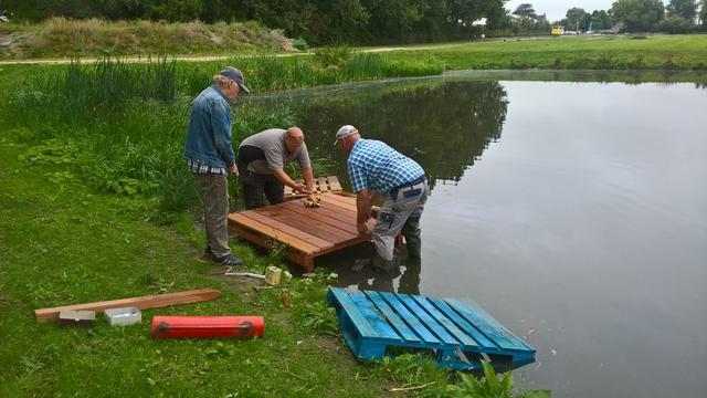 Buurt legt vissteigertjes aan bij vijver Zoutmanstraat