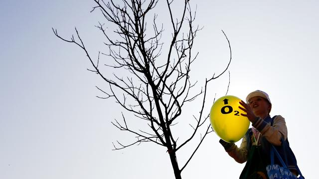Eeuwelingen krijgen eigen boom in de gemeente