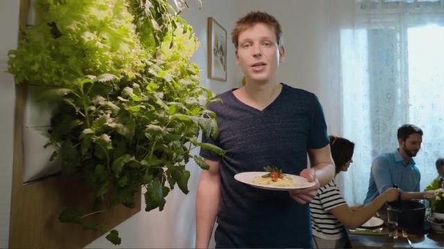 Kickstartproject voor verticaal groentetuintje
