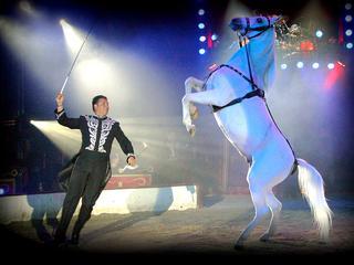 Een fantastische circusvoorstelling in de kerstvakantie voor de helft van de prijs