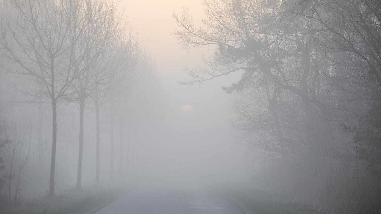 Vertraging voor vluchten van en naar Schiphol door mist ...