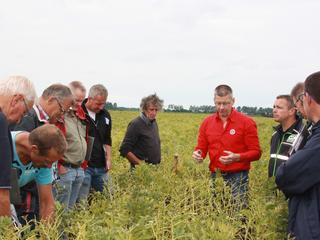 Gunstige omstandigheden zorgen voor hogere opbrengst en een vroegere oogst