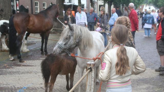 Voorschoten in teken van feesten tijdens paardenmarkt