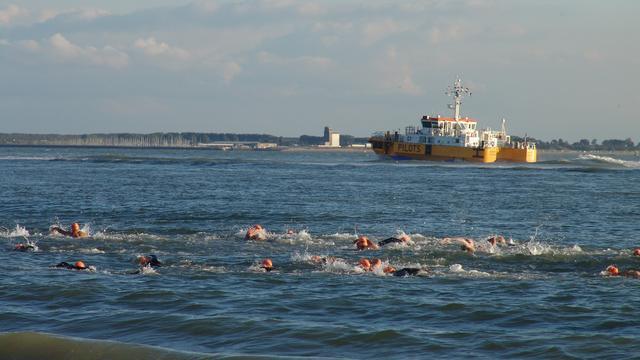 Zwemmers onderweg naar Scheldebeker