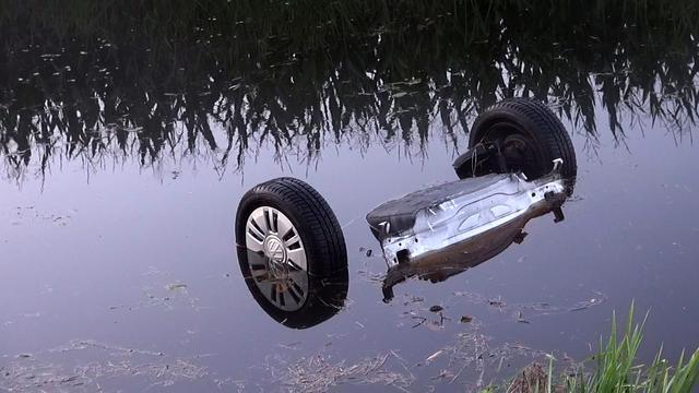 Automobilist raakt ree en belandt in het water in Nieuwe Balinge