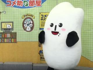 Eerste keer dan jongeren onder de twintig jaar in Japan mogen stemmen