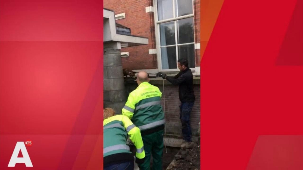 Vos Marnixstraat laat zich niet makkelijk vangen