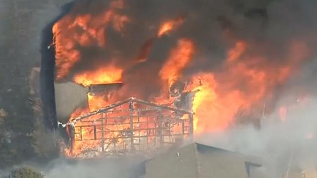 Tientallen mensen geëvacueerd vanwege bosbrand in Colorado