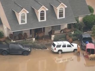 Oorzaak ligt bij de zware regenbuien die vooral donderdag voor grote hoeveelheden water zorgden