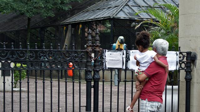 Britse dierentuin moet dicht na grote dierensterfte