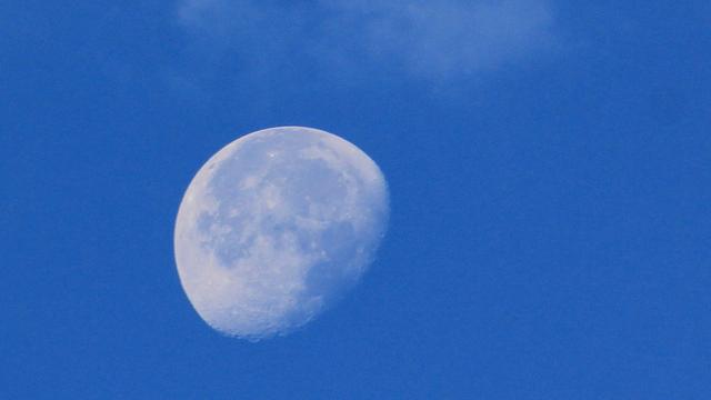 UFO-jager 'ontdekt' basis aliens op de maan