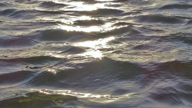 Stadjers kunnen weer veilig zwemmen bij Kardinge