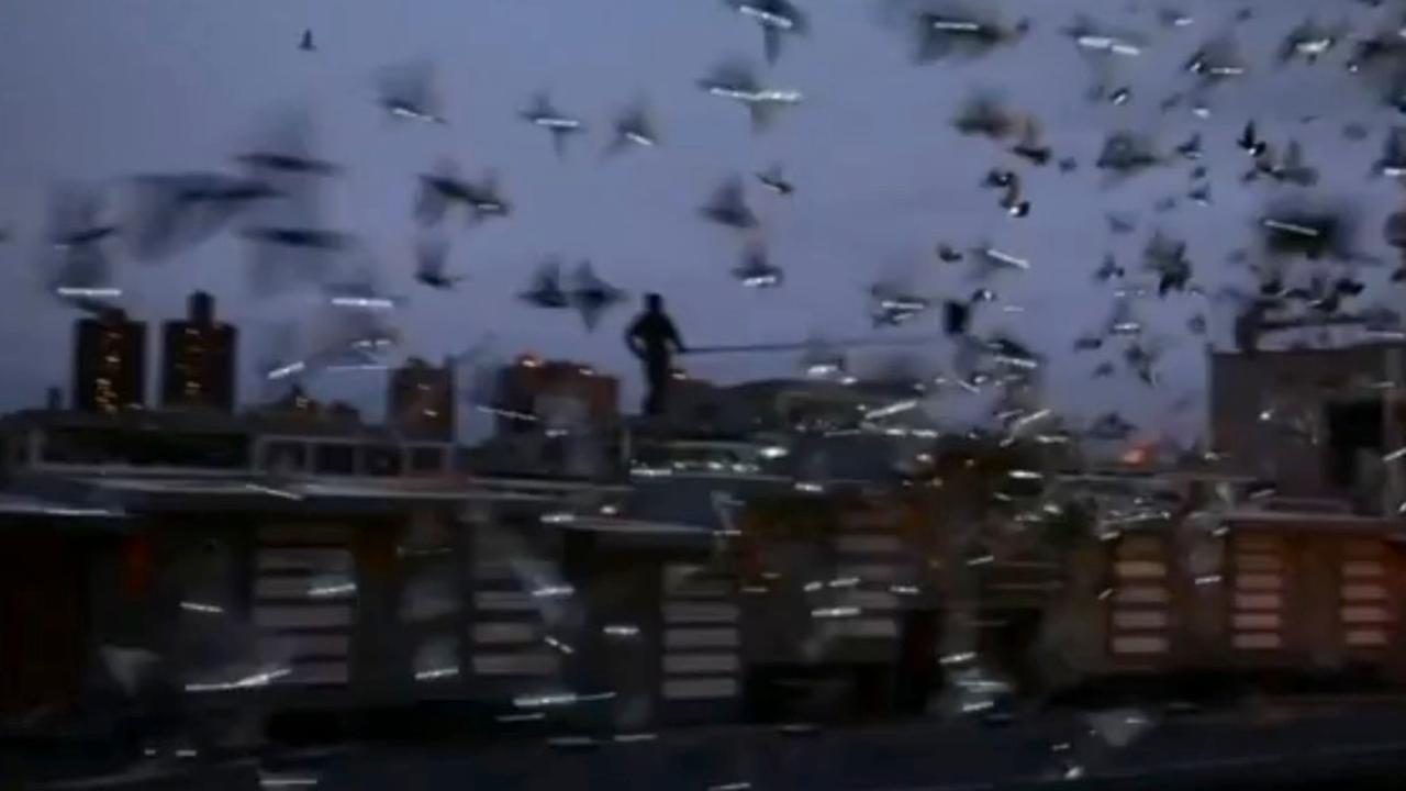 Verlichte duiven zorgen voor betoverende lucht in New York