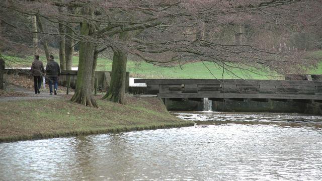 Houten brug in Godwaldtpark wordt vervangen