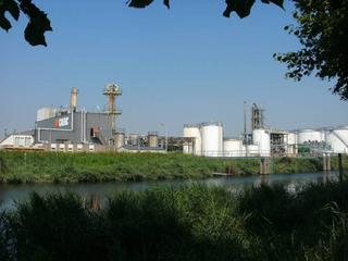 Gemeente Moerdijk gaat bestemmingsplan De Koekoek actualiseren