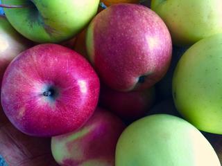 Resusapen met kleurenzicht vinden sneller fruit